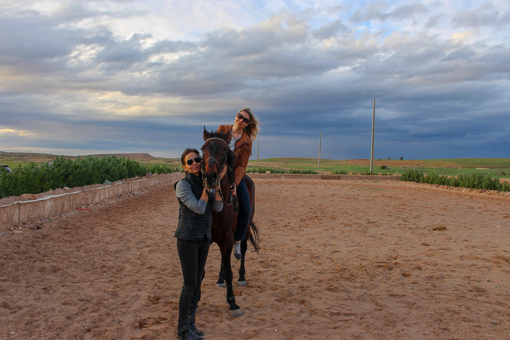 Golden hour at the horse ranch