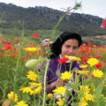 Poppy fields Beni Mellal