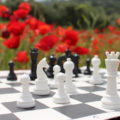 Poppies & Chess in Rural Morocco